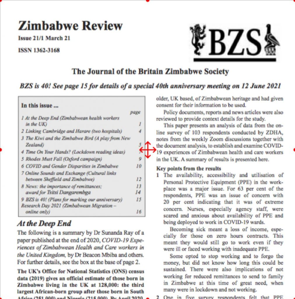 BZS Review March 2021